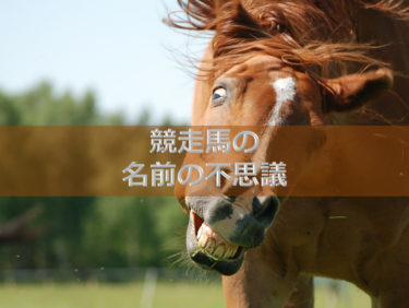 【第7話】競走馬の名前の不思議
